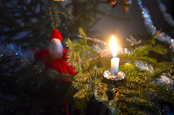Kuusenkynttilä, candle, christmastree