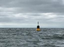 Hello lonely buoy