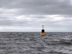 Lonely buoy